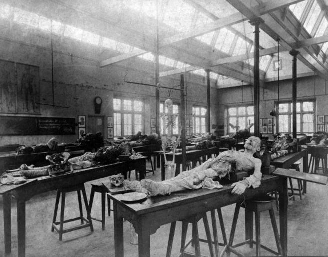 L0002687 Photograph: the dissecting room, Cambridge, 1888